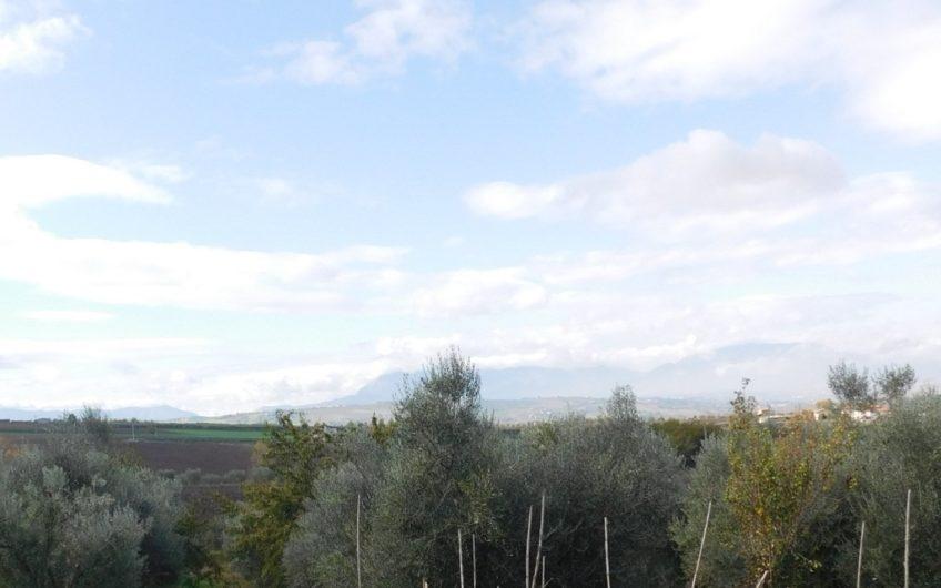 Casa indipendente con 30.000 mq. di terreno